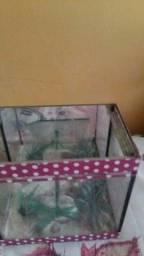 Título do anúncio: Vendo aquário pequeno para peixe 30 reais.