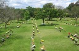 Jazigo cemiterio curitiba