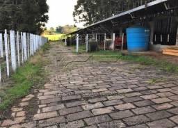 3 há - Oportunidade - Vila Lângaro