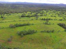 Fazenda pronta em Paraíso do Tocantins
