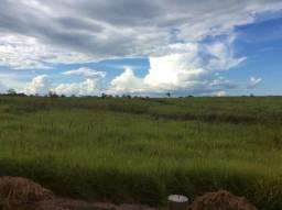Fazenda Santa Gema