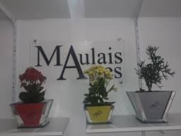 Vasos para planta feitos em vidro com plotagem