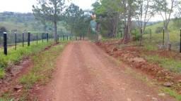 Fazenda de 50,5 alqueires na cidade de Lindoeste