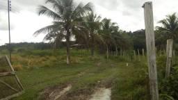 Fazenda na BR 174 km15. 1000x8000