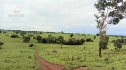 Título do anúncio: Fazenda à venda, 377 alqueires por R$ 15.000.000 - Zona Rural - Campos Lindos/TO
