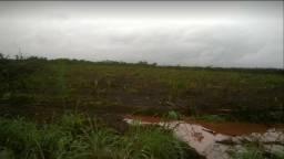 Fazenda arrenda 1500ha