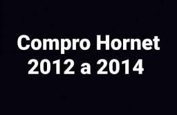 Hornet 2012