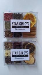 Kit Gin Tônica 14 Especiarias Drinks