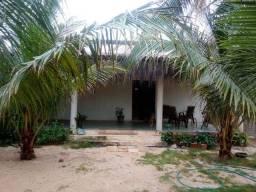 Casa na praia da Taiba