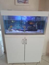 Aquario 98 litros completo
