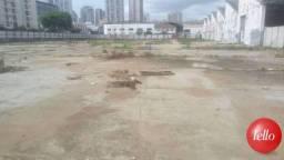 Terreno para alugar em Ipiranga, São paulo cod:206446