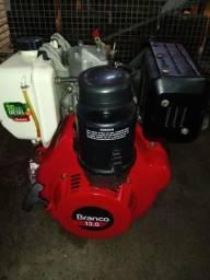 Motor branco 13 hp diesel