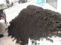 Terra preta preparada para viveiros de mudas muda plantaçao de planta