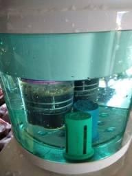 Mini fábrica água ionizada maguinetica corrigida pelo aparelho Sylocimol e topH+