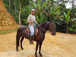 Cavalo MM - Registrado