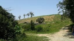 Fazenda 56 alqueires 40 de Pasto (Willian Ricardo)