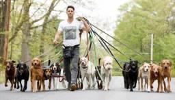 Passeio com cachorros da vizinhança!!!
