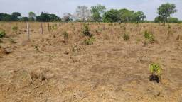 Arrendamento Agrícola - Redenção-PA (Área 1.000 Há)
