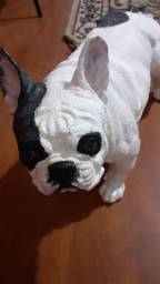 Bulldog em gesso