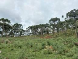Título do anúncio: Terreno a venda em Urubici