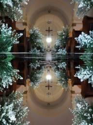 Passarela Espelhada Tapete de Espelho Locação Norte do Paraná E Sul de SP