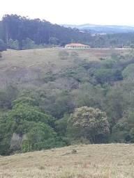 Sitio Próximo de Figueira Ibaiti