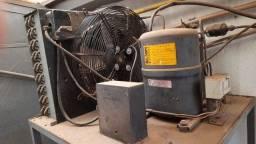 Título do anúncio: Unidade de Refrigeração Elgin Bristol