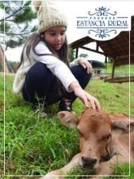 Conhece a Pousada Estância Rural em Santa Teresa-ES?