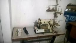 Máquina de costura industrial (elastiqueira)