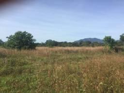 Fazenda com 420 hectares no Canta/RR, ler descrição do anuncio