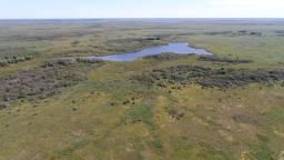 Título do anúncio: Fazenda à venda em Poconé MT com 87.875 hectares