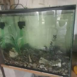 Vende se aquário