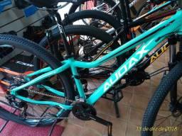 Bike Audax 29