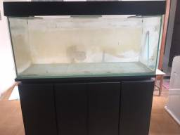 Aquario 450 litros