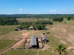 Fazenda de 206 hectares sendo 62 hectares de pasto