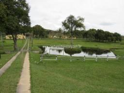 Caetano Imóveis - Fazendinha luxo com 18 hectares e 18 suítes! (ideal para pousada)