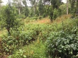 Vendo propriedade rural em Vista Alegre do Prata