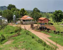 Fazenda Pecuária Leiteira + Área para plantio de Café