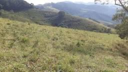 Título do anúncio: Magnífica Fazenda com 31 alqueires em Maria da Fé-MG