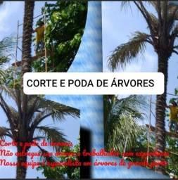 Título do anúncio: Corte e polda de árvores