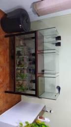 Bateria de aquários com estrutura de Metalon!