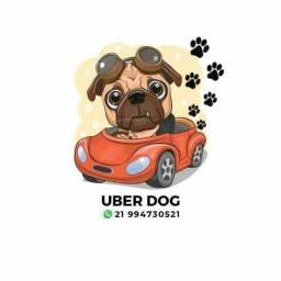 Transporte  de Pet com carinho e responsabilidade.