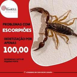 Livre-se dos Escorpiões / Dedetização