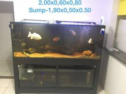 Aquario 1500 litros
