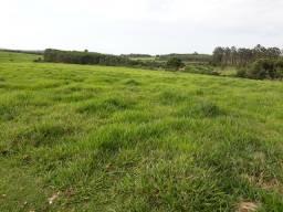 Sítio chácara fazenda região de Ribeirão preto