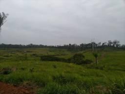 Vendo Colônia de 45 hectares