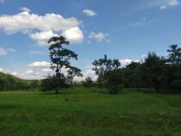 Sítio 7 Alqueires com 5 anos de terra orgânica (Willian Ricardo)