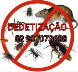 Título do anúncio: Dedetização Para Ratos e Outros insetos