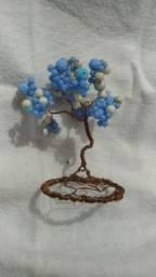 decoração de bonsay e outros