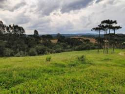 Fazenda para Venda, terreno 92,00 Hectares Rio Negrinho / SC